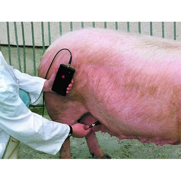 Produse, Instrumentar & Aparatura Veterinara | Gard Electric | Crotalii Animale -Detector gestatie suine