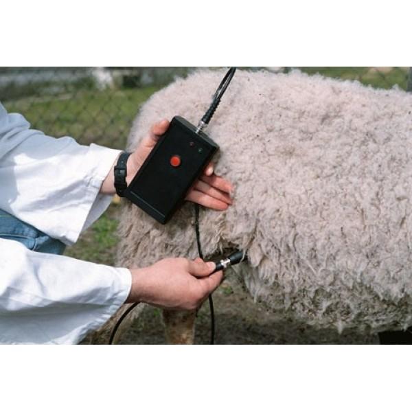 Detector gestatie oi, capre
