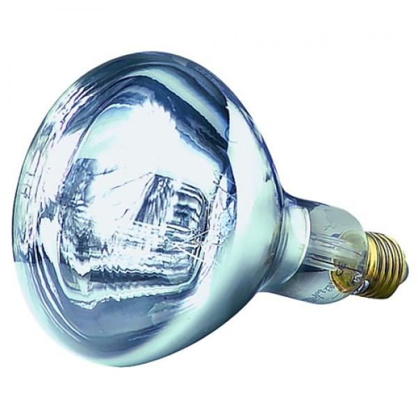 Produse, Instrumentar & Aparatura Veterinara | Gard Electric | Crotalii Animale -Bec IR alb 250 W