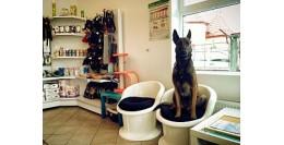 Produse, Instrumentar & Aparatura Veterinara | Gard Electric | Crotalii Animale - Cabinetele veterinare - echipamente necesare