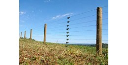 Produse, Instrumentar & Aparatura Veterinara | Gard Electric | Crotalii Animale - Protejarea suprafetei fermei noastre cu ajutorul gardurilor electrice