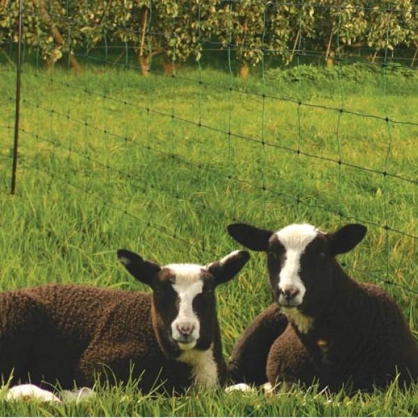 Produse, Instrumentar & Aparatura Veterinara | Gard Electric | Crotalii Animale -Gard plasa ovine Koltec 0.84/50m