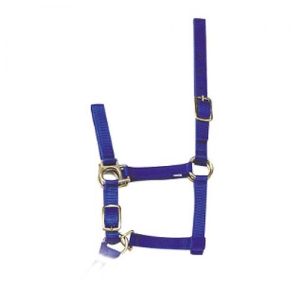 Produse, Instrumentar & Aparatura Veterinara | Gard Electric | Crotalii Animale -Capastru albastru pentru cai