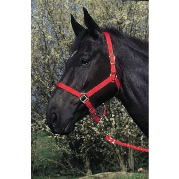 Produse, Instrumentar & Aparatura Veterinara | Gard Electric | Crotalii Animale -  Capastru rosu pentru cai