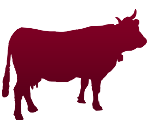 Produse, Instrumentar & Aparatura Veterinara | Gard Electric | Crotalii Animale - Bovine